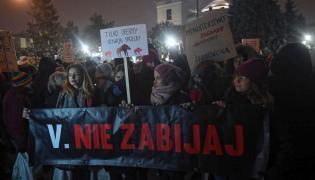 """Demonstracja zorganizowana przez Partię Zieloni """"Żubry, dziki nie do odstrzału, ministrowie do dymisji!"""""""