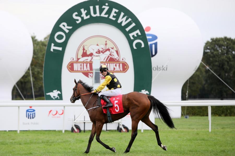 Zwycięzca Michał Abik na koniu Pride Of Nelson po gonitwie Wielka Warszawska na Torze Wyścigów Konnych Służewiec