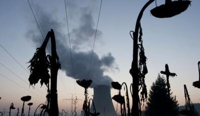Eksperci uspokajają. Sytuacja w Fukushimie opanowana