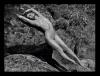 Milla Jovovich - Kalendarz Pirelii 2012
