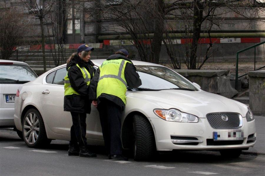 Auto Kingi Rusin