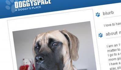 Psy piszą blogi