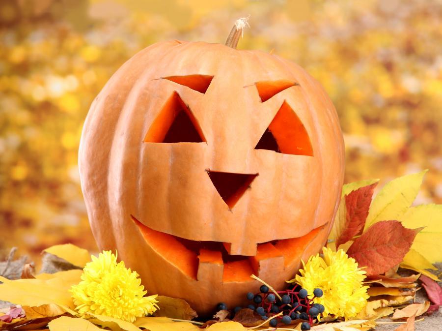 Dynia - symbol Halloween