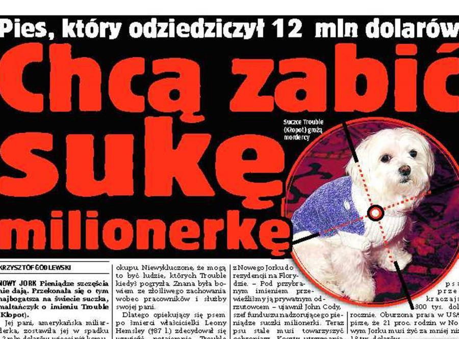 Pies odziedziczył fortunę i grozi mu niebezpieczeńwo