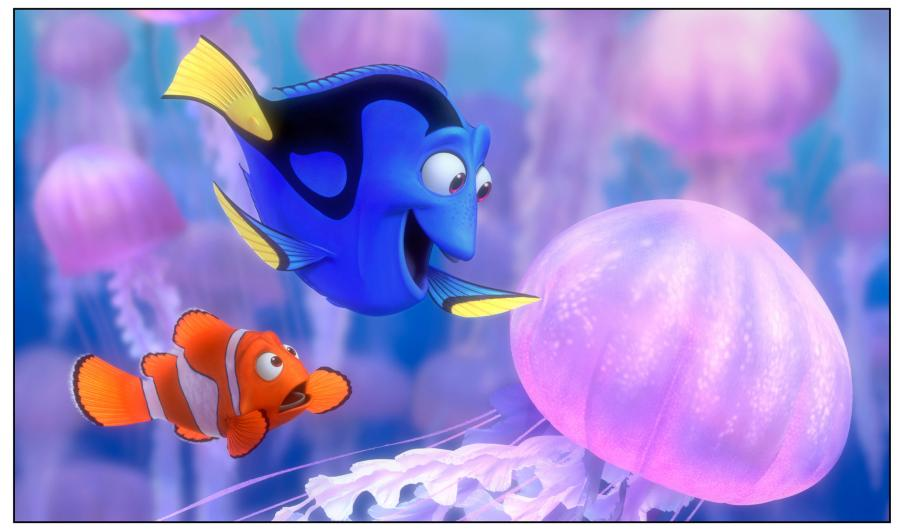 """5. """"Gdzie jest Nemo?"""""""