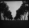 Wycieczka pod Warszawę, 1960, TADEUSZ ROLKE, dzięki uprzejmości artysty