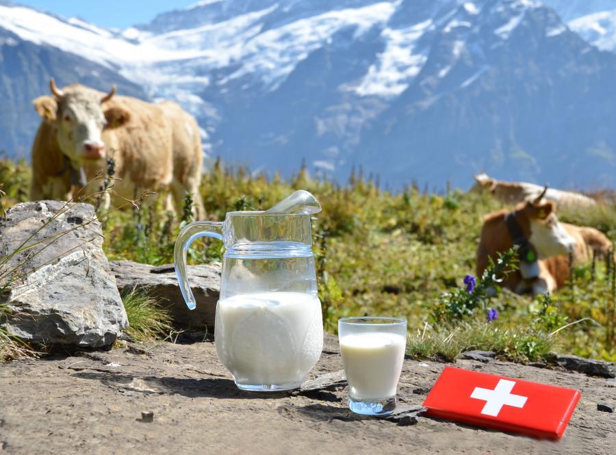 Miejsce 1 - Szwajcaria