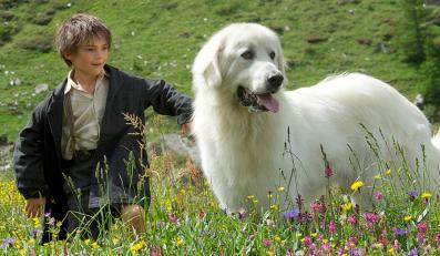 """""""Bella i Sebastian"""" – pocztówka, ale będąca sprawnym rękodziełem"""
