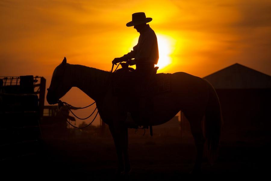 kowboj na dzikim zachodzie