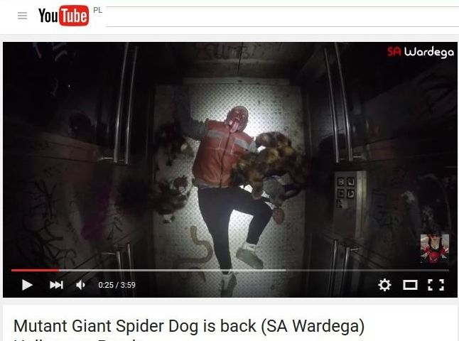 Wardega - Mutant Giant Spider Dog