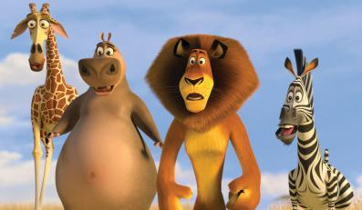 """""""Madagaskar 2"""" - kontynuacja przeboju sprzed paru lat"""